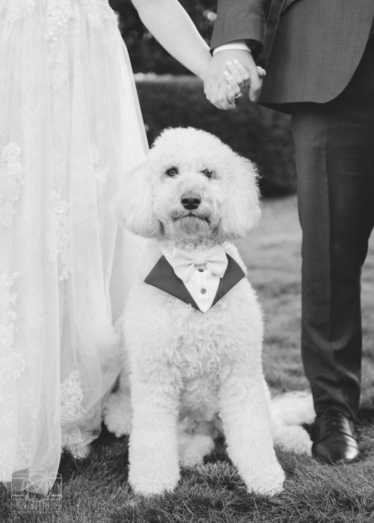 Belle Crane Inn Wedding Photos